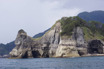 From the sea to the mountain, and wine: the Izu collision zone (BOOKING NOW CLOSED)